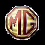 rimappatura centralina auto Mg TF logo